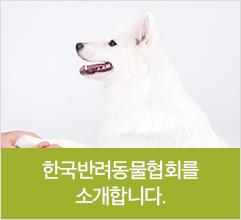 한국반려동물협회를 소개합니다.