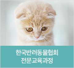 한국반려동물협회 전문교육과정
